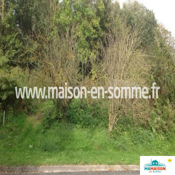 Offres de vente Terrain Montigny-sur-l'Hallue (80260)